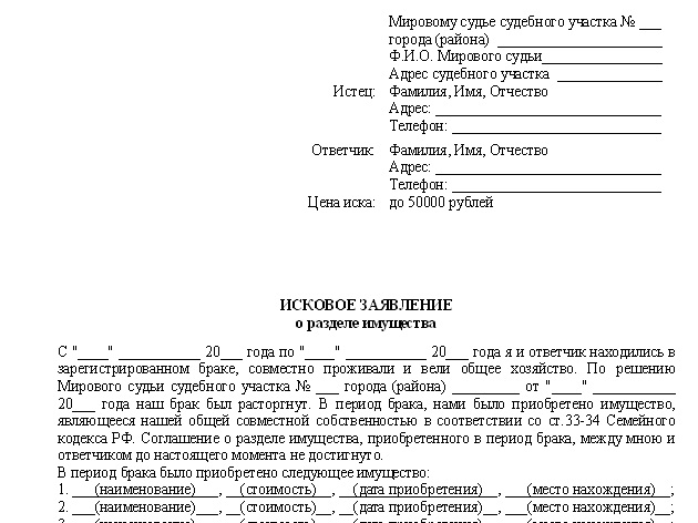 бланки заявления раздел имущества в суд