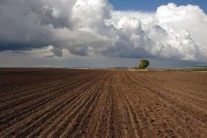 Формы доверенности дарения земельного пая